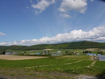 富良野はこんな景色が続くのです
