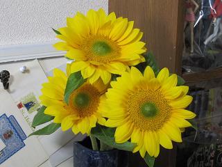 花のある週末