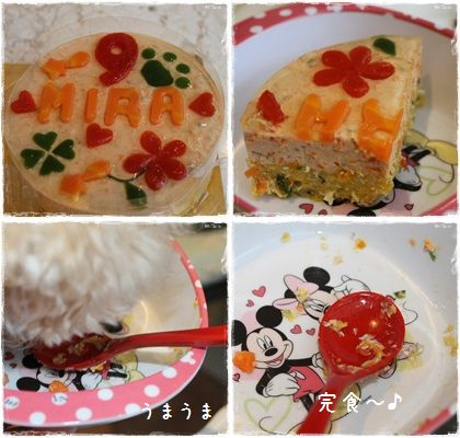 バースデーケーキ(9歳)