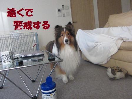 utagai4.jpg