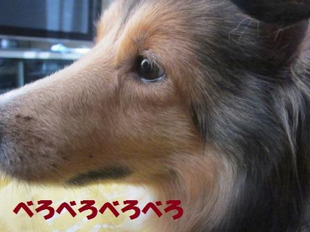 utagai5-1.jpg