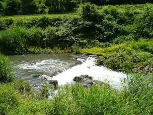 増水した田倉川