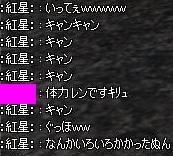 11051103.jpg