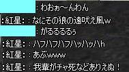 11062704.jpg