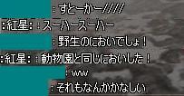 11091805.jpg