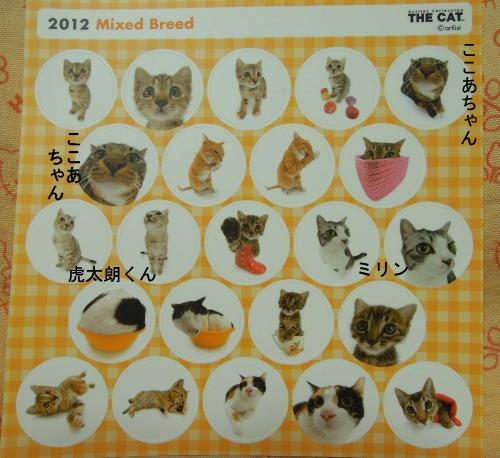 THE CAT-4