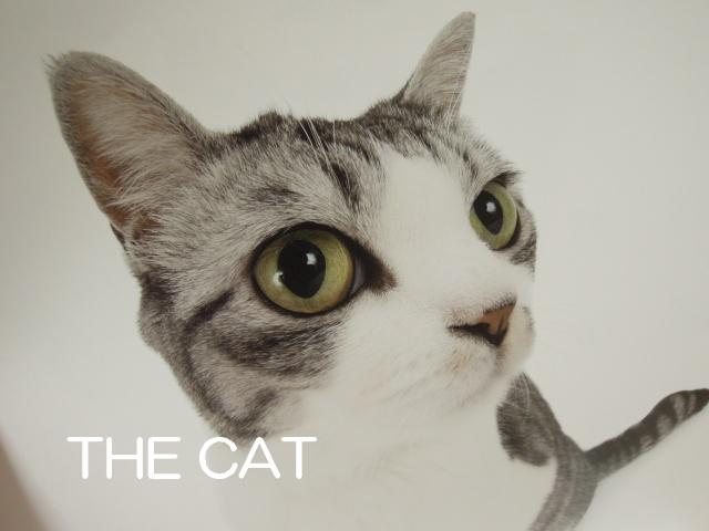 THE CAT-1