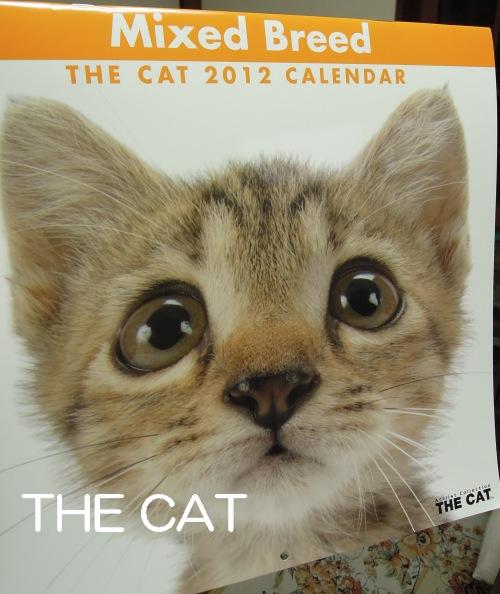 THE CAT-2