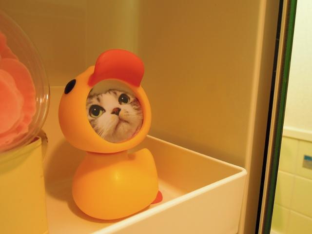 お風呂の天使さま1