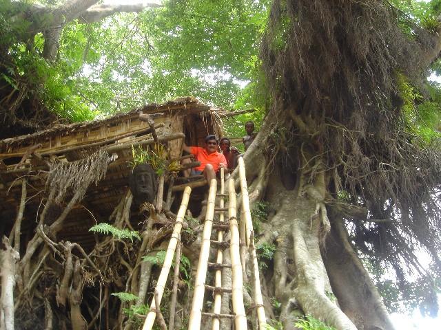 10M以上の樹上の住居訪問