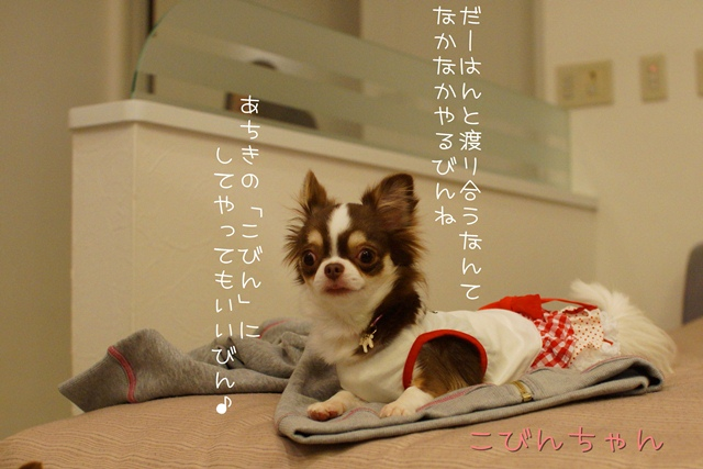 DSC00674.jpg