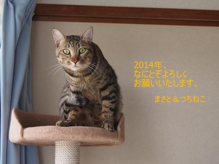 2013123103.jpg