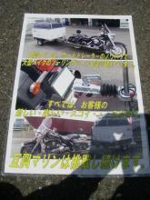 IMGP9050-1.jpg