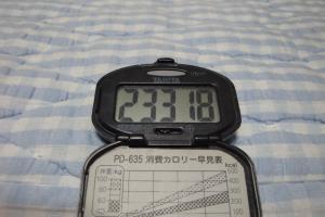 100605-060万歩計(縮小)