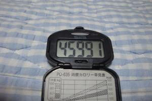 100606-050万歩計(縮小)