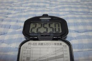 100612-060万歩計(縮小)