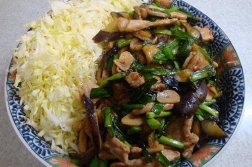 100617-010豚肉と茄子の甘辛炒め(縮小)