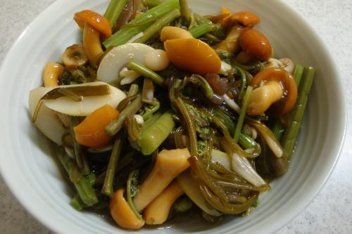 100617-030めかぶ山菜和え(縮小)