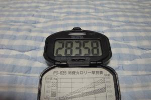 100617-050万歩計(縮小)