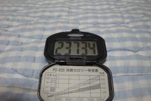 100619-070万歩計(縮小)