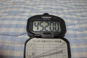 100620-030万歩計(縮小)