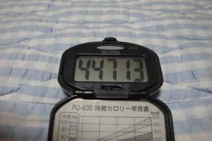100627-050万歩計(縮小)
