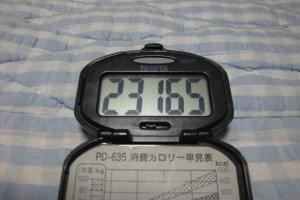 100710-070万歩計(縮小)