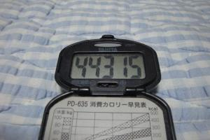 100711-006万歩計(縮小)