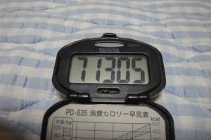 100719-040万歩計(縮小)