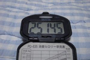 100724-060万歩計(縮小)
