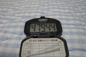 100725-050万歩計(縮小)
