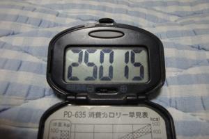 100731-050万歩計(縮小)