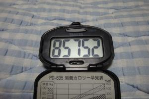 100811-015万歩計(縮小)