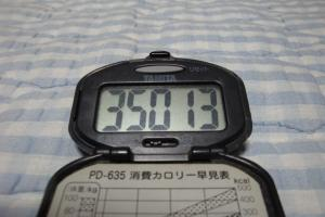 100813-060万歩計(縮小)