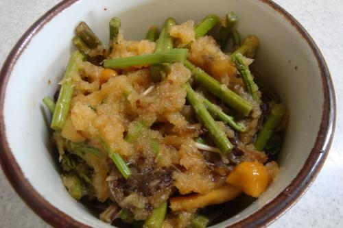100815-040山菜のおろし和え(縮小)