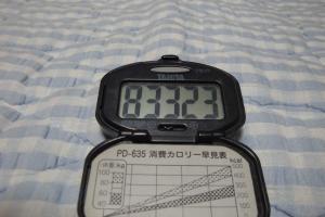 100815-060万歩計(縮小)