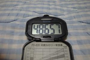 100829-060万歩計(縮小)