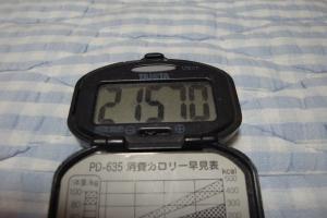 100925-050万歩計(縮小)