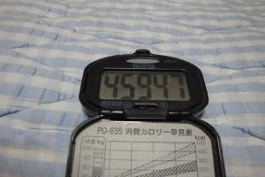 101010-060万歩計(縮小)