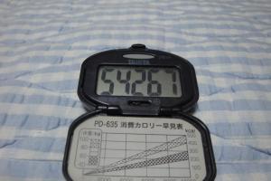 101024-020万歩計(縮小)