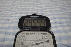 101030-050万歩計(縮小)