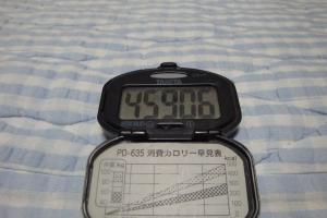 101031-060万歩計(縮小)