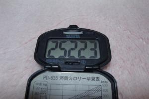101106-060万歩計(縮小)