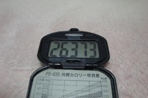101113-050万歩計(縮小)