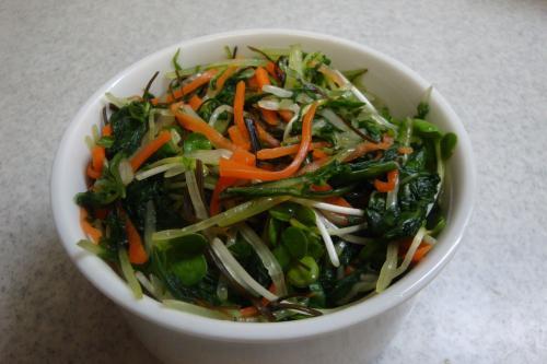 101114-040みず菜の浅漬け(縮小)