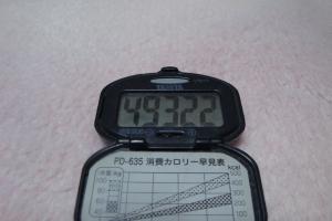 101114-060万歩計(縮小)