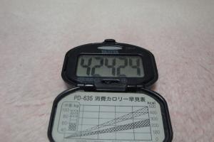 101121-050万歩計(縮小)