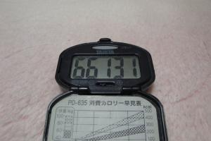 101123-050万歩計(縮小)