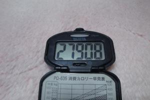 101127-030万歩計(縮小)