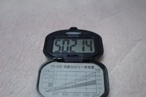 101128-060万歩計(縮小)
